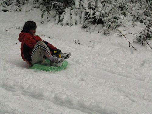 8195_sledding